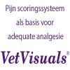 pijn_scoringssysteem_als_basis_voor_adequate_analgesie