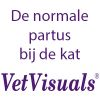 De_normale_partus_bij_de_kat_